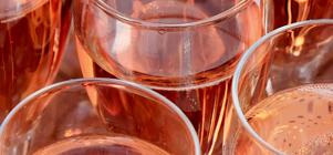 Dégustation de Vins de Provence